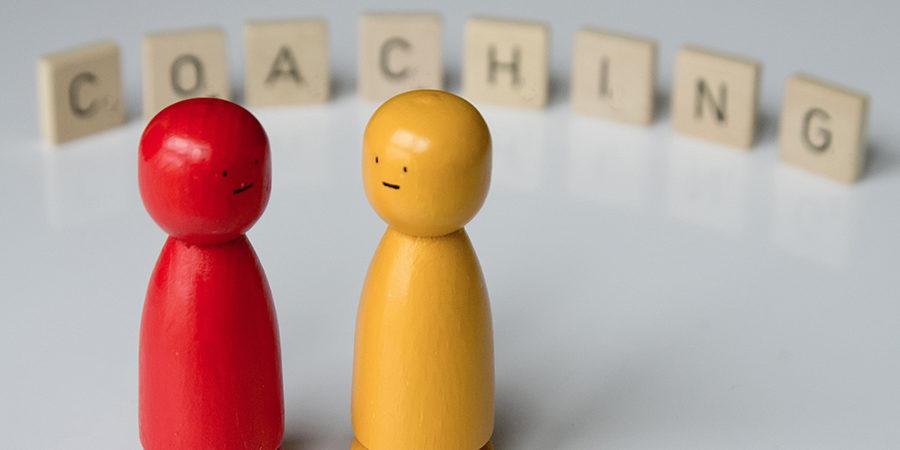 Pair-Coaching